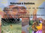 natureza e instintos
