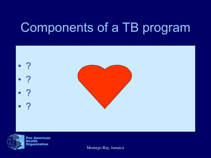 Components of a TB program