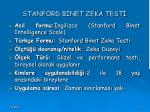 stanford b net zeka test