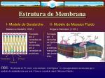 estrutura de membrana