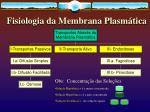fisiologia da membrana plasm tica