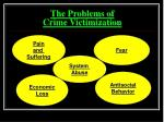 the problems of crime victimization