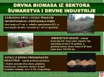 drvna biomasa iz sektora umarstva i drvne industrije