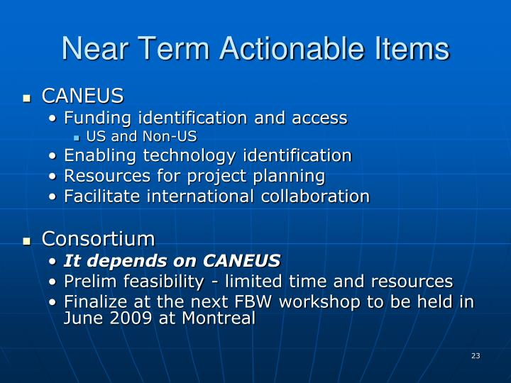 Near Term Actionable Items