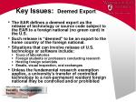 key issues deemed export