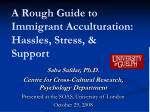 a rough guide to immigrant acculturation hassles stress support