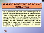 aparato digestivo de los no rumiantes