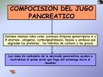 compocision del jugo pancreatico