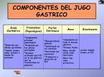 componentes del jugo gastrico