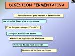 digesti n fermentativa