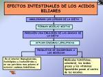 efectos intestinales de los acidos biliares