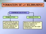 formacion de la bilirrubina