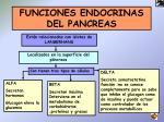 funciones endocrinas del pancreas