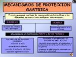 mecanismos de proteccion gastrica