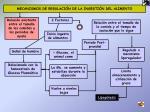 mecanismos de regulaci n de la ingesti n del alimento
