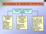 mecanismos de secreci n intestinal