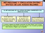 metabolismo y circulacion entero epatica de los acidos biliares