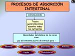 procesos de absorci n intestinal1