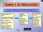 rumia y su regulacion