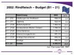 2002 rindfleisch budget b1 21