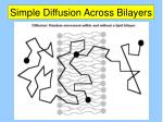simple diffusion across bilayers1