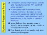 sodium potassium pump1