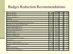 budget reduction recommendations3