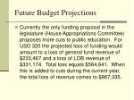 future budget projections