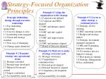 strategy focused organization principles
