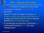 atp adenosintrifosfato