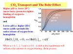 co 2 transport and the bohr effect