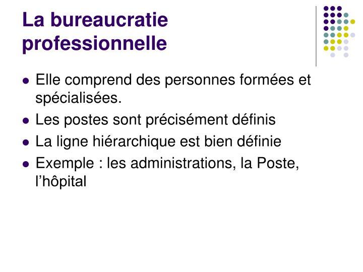 La bureaucratie professionnelle
