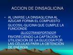 accion de dinsaglicina1
