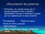 glicosilaci n de prote nas2