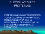glicosilacion de proteinas2