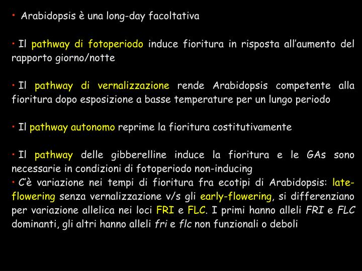 Arabidopsis è una long-day facoltativa