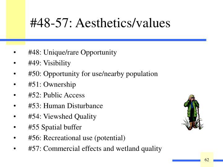 #48-57: Aesthetics/values