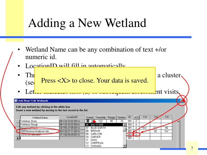 Wetland Name can be any combination of text +/or numeric id.