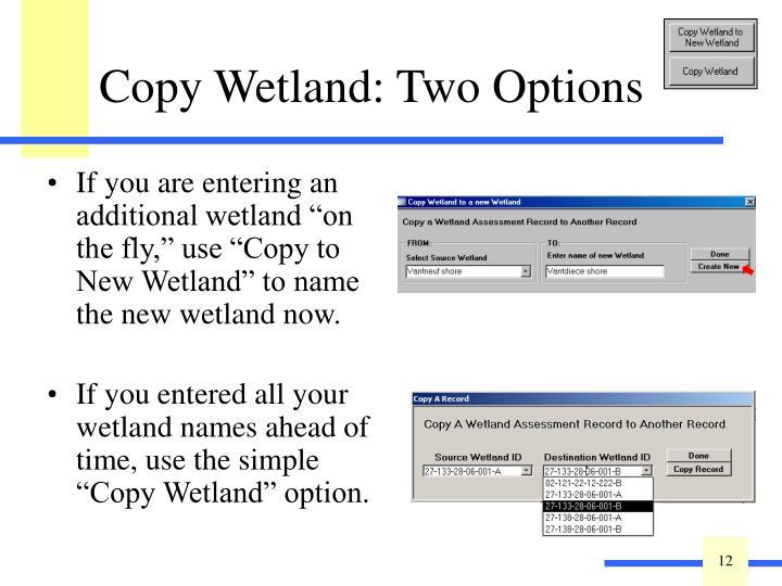 Copy Wetland: Two Options
