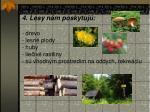 4 lesy n m poskytuj drevo lesn plody huby lie iv rastliny s vhodn m prostred m na oddych rekre ciu