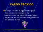 cargo t cnico