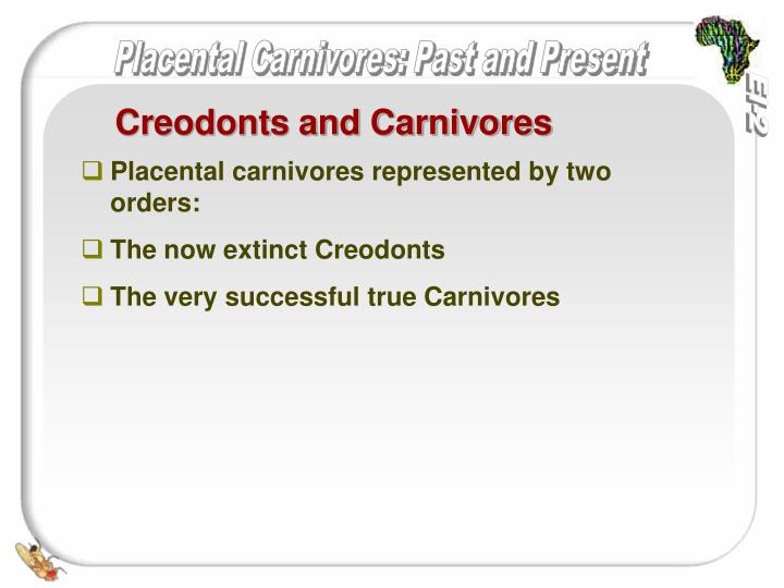 Creodonts and Carnivores