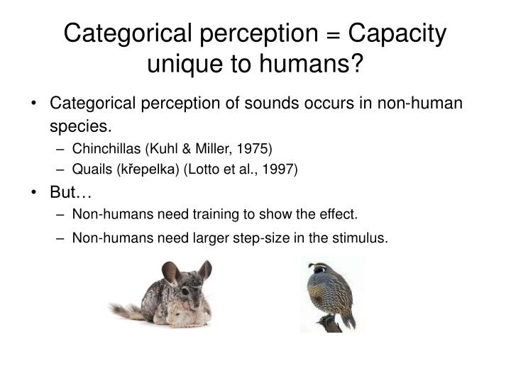 Categorical perception = Capacity unique to humans?