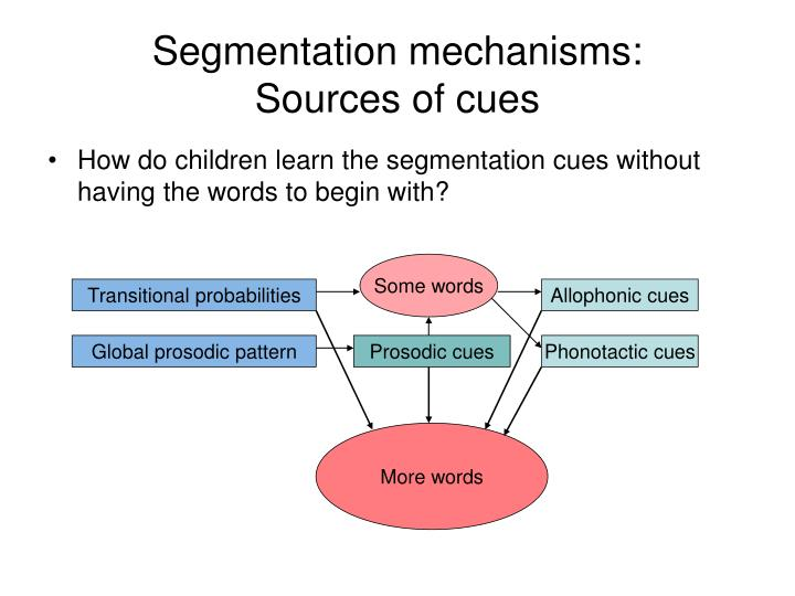 Segmentation mechanisms: