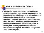 what is the role of the courts