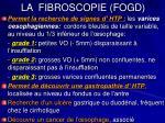 la fibroscopie fogd