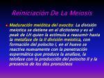 reiniciaci n de la meiosis