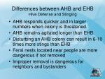 differences between ahb and ehb hive defense and stinging