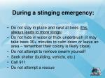 during a stinging emergency