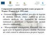componentele modelului ngrijirii cronice propuse de wagner wagner et al 1999 sunt